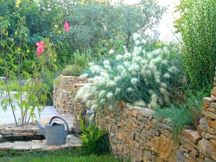 Creation de jardin le vegetal