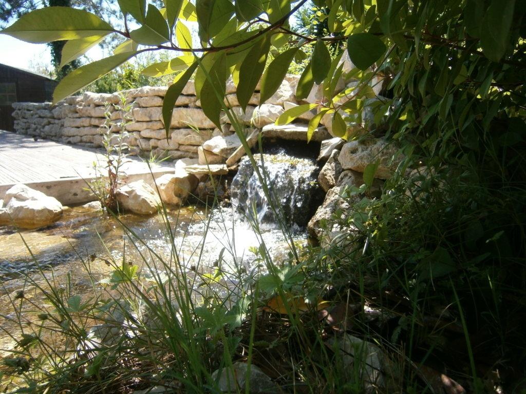 Cascade-baignade-naturelle