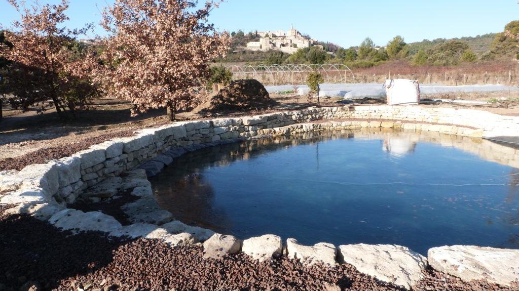 creation-dun-bassin-dagrement-baignade-a-crillon-brave-pied-ventoux-4