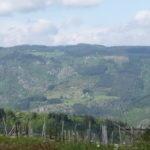 Vue-sur-la-vallée